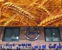 پاسخ به ۵ سوال مهم درباره مزایای عرضه گندم در بورس