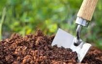صادرات خاک زراعی و مرتعی همچنان ممنوع است