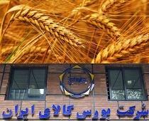 موافقت و استقبال مجلس از عرضه کل گندم در بورس کالا