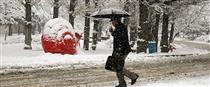 سازمان هواشناسی : برف و باران کشور را فرا میگیرد