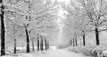 آغاز بارش برف و باران و کاهش تا 10 درجه ایی دما در بخش زیادی از ایران