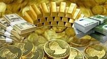 روند پایان ناپذیر افزایش سکه با رکوردهای جدید/ پوند ۱۰ هزار تومان شد