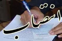 رئیس سازمان صنعت استان تهران منصوب شد