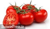 صادرات رب گوجه فرنگی تا پایان آبان بلامانع اعلام شد