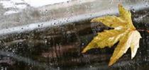 بارش باران در اغلب استانها طی سه روز آینده و کاهش ۸ تا ۱۰ درجهای دما در شمال شرق