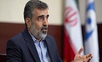 شروط و تذکرات ایران قبل از سفر مدیر کل آژانس انرژی اتمی به تهران